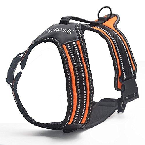 Pettorina Per Cane- Premium Imbracatura Durevole e Regolabile ,Super-comoda per la Corsa, Passeggiate, Jogging-Taglia L,Arancio
