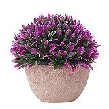 Delleu Plantes artificielles en Pot Mini Fausses Plantes décoratives réaliste Fleurs Plantes Vertes