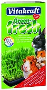 Vitakraft - 25056 - Green Fresh Herbe Rongeurs - 120 g