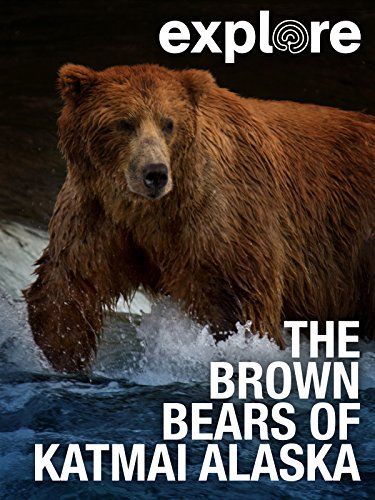 Explore: The Brown Bears of Katmai Alaska (Care Bears Filme)