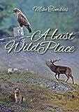 Last Places Review and Comparison