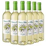 Señorío de los Llanos Verdejo - Vino Blanco, Pack de 6 Botellas x 75 cl, Volumen de Alcohol 12,5%
