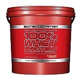 SCITEC Nutrition 100% Whey Protein Professional - 5 kg Vainilla