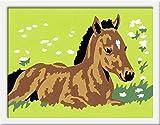 Ravensburger 29592 - Kleines Fohlen - Malen nach Zahlen, 8.5 x 12 cm
