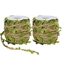 Tenn Well Jute Twine with Leaf, 66 Feet x 2 Rolls Leaf Ribbon with Coil for Wedding Home and Garden Decoration