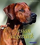 Rhodesian Ridegeback: Der Löwenhund Afrikas (Cadmos Großformat)