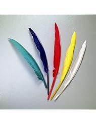 Lot de 10 Plumes d'indien 20 à 30 cm, 5 couleurs assorties