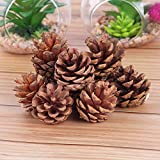 APSAMBR- 12 PCS Christmas Tree Pine Cones Hanging Pinecone Xmas Newyear Holiday Party Decoration Ornament Home Parties Supplies