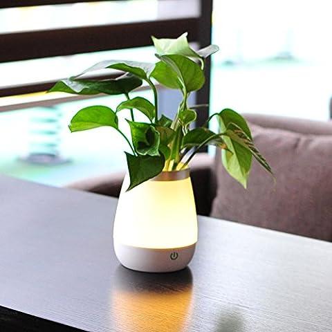 YMJ Florero pequeños noche luz innovación pequeña lámpara recargable dormitorio lámpara de mesilla, no incluyen