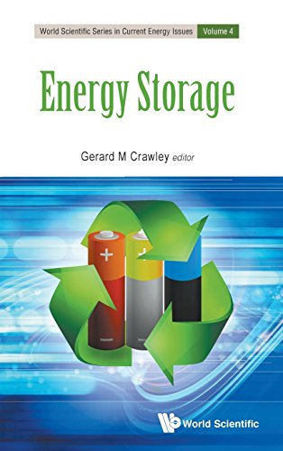 Energy Storage: 4 (World Scientific Series in Current Energy Issues)