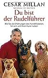 Du bist der Rudelführer: Wie Sie die Erfahrungen des Hundeflüsterers für sich und Ihren Hund nutzen - Cesar Millan, Melissa Jo Peltier