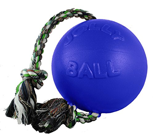 Artikelbild: Jolly Pets romp-n-roll Ball