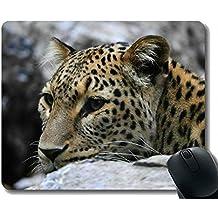 Yanteng Las Almohadillas de ratón del rectángulo Ordenadores portátiles, zoológico de Piedra del Leopardo Mousepad