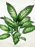 60cm Artificial Silk Dieffenbachia Plant