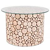 SENLUOWX Couchtisch Echt Holz Boden Sekuritglas Tischplatte Beistelltisch Couch Tisch Wohnzimmer Tisch Pflanzenständer 60,5x 40cm