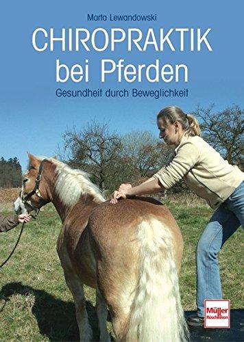 Chiropraktik bei Pferden: Gesundheit durch Beweglichkeit