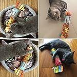 VWH Catnip Cat Toys Animal Plush Fish Play Toy 3D Fish Cushion Pillow (20cm gold) 8