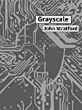 Grayscale (The Netherspace Series Book 2)
