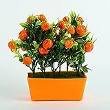 Hyperboles Classy Orange Fruit Decorative Jungle for Home Decor