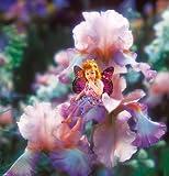 Clementoni 5307814 - Pink Iris Fairy  1000 Teile