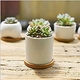 Keramik Blumentöpfe, Y & M (TM) weiß rund schlichtes Design sucuulent Blumentopf/Cactus Pflanztopf Blumentopf mit Bambus Tablett/Behälter/Pflanzkübel