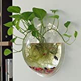 Acryl Wand montiert zum Aufhängen Fish Bowl Aquarium Tank Plant Blumentopf transparent