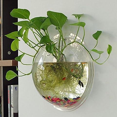 Yooyoo Creative Acrylique à suspendre support mural Aquarium Bol Vase Aquarium Pot de fleurs Bol à bulles pour aquarium Décor