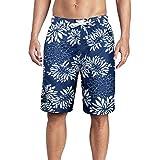 Beach Wear Herren Hawaii Shorts Badehose Freizeit Hawaii Hose Schnelltrocknend Badeshorts mit Mesh EHS019-2XL