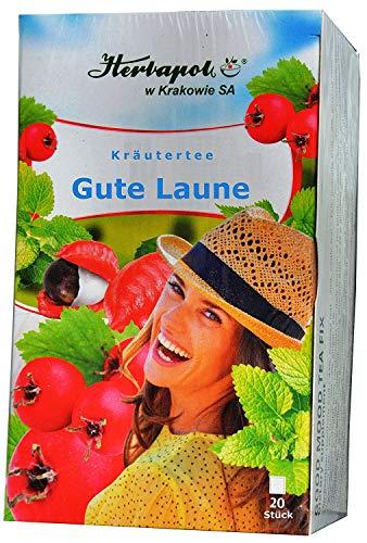 Stärkungs Kräuter Tee mit Guarana, Ginseng, Ingwer, Weißdorn, 4 weiteren Kräutern, 20 x 2g, 40g, erwärmt, gleicht Stress, psychische Belastungen aus, verleiht neue Kraft, beugt Grippe, Erkältung vor, -