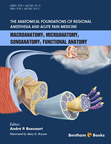 The Anatomical Foundations of Regional Anesthesia and Acute Pain Medicine (English Edition)