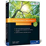 SAP BusinessObjects (BOBJ) Web Intelligence (SAP Webi) (3rd Edition) (SAP PRESS) (Comprehensive) by Jim Brogden (2014-10-03)