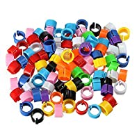 100 Pieces Colorful Poultry Foot Rings 8 Mm Bird Foot Rings Premium Plastic Identification Leg Ring Great Mark For Poultry,Birds,Pigeon Poultry Supplies(Colorful)