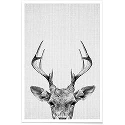 """JUNIQE® Poster 20x30cm Schwarz & Weiß Hirsche - Design """"Print 38"""" (Format: Hoch) - Bilder, Kunstdrucke & Prints von unabhängigen Künstlern - Schwarz Weiß Kunst   Black & White Art - entworfen von Lila x Lola"""