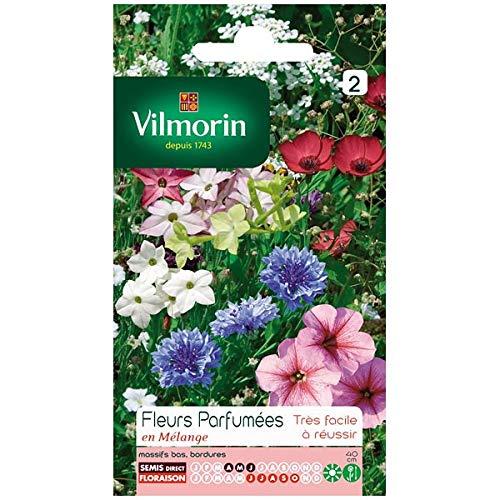 Vilmorin - Sachet graines Fleurs parfumées en mélange