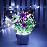 Kingmia Faltbare Solarschnur feenhaftes Licht 10M 100 LED Solarlichter LED Band Beleuchtet Schnur Lichter Solargarten Schnur Beleuchtet Kupferdraht-Weihnachtslichter Schlafzimmer Hochzeits Dekor H02