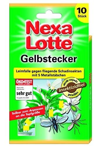 nexa-lotte-gelbstecker-10-st