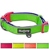 Blueberry Pet Soft & Comfy New Summer Hope 3M Refelctive Fluorescent Green Padded Collar, Neck 30cm-40cm, Small, Collars for Dogs, Matching Harness Available Separately