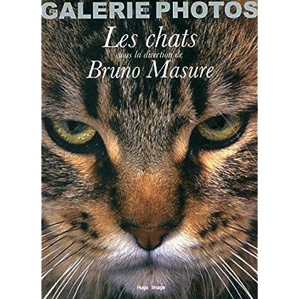 Coffret ma galerie de photos les chats