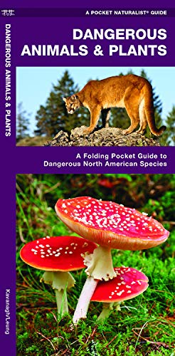 Dangerous Animals & Plants: A Folding Pocket Guide