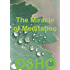 The Miracle of Meditation (OSHO Singles)