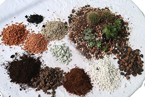 Mineralisch Organische Kakteenerde Substrat Gärtner Qualität 5L Adeniumerde Amaryllis Wüstenrose