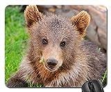 Sweet Bear Cub Mouse Pad, Mousepad (Bears Mouse Pad)