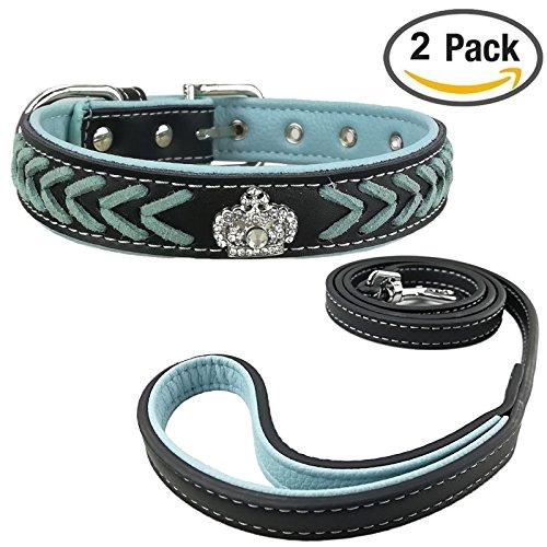Newtensina Hundehalsband und Leine Set Nylonb?nder gewebter Bling Kragen Leder Diamante Welpen Halsband mit Leinen f¨¹r Hunde -