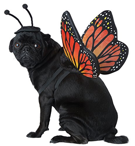 California Costumes Collections PET20164 Monarch Butterfly Dog Costume, Large (Butterfly Haustier Kostüm)