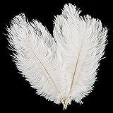 10 Stück Straußenfedern Feder Weiß Natürlich für Hochzeit Party Deko 30-35cm (Weiß)