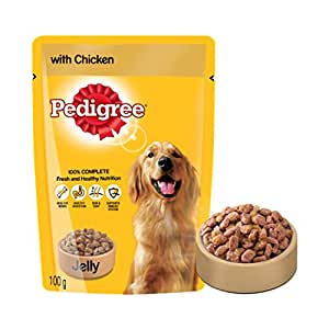 Pedigree Gravy Adult Dog Food Pouch, Chicken in Jelly, 100g (Sample)