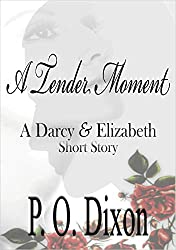 A Tender Moment: A Darcy and Elizabeth Short Story (Darcy and Elizabeth Short Stories Book 3) (English Edition)