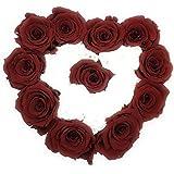 ETERNAL ROSES, konservierte Rosen XL, Red & White, Geschenkbox Farbe Bordeaux