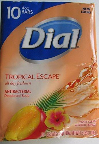dial-tropical-escape-antibacterial-deodorant-bar-soap-4-oz-10-count-by-dial