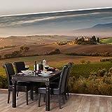 Bilderwelten Vliestapete Premium - Olivenhain in der Toskana - Fototapete Quer Vlies Tapete Wandtapete Wandbild Foto, Größe HxB: 320cm x 480cm